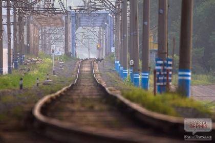 ВПермском крае поезд сбил 17-летнего нетрезвого подростка