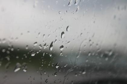 Летом вПермском крае выпало аномальное количество осадков